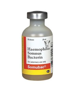 Somubac® Injectable [20ml] (10 dose)