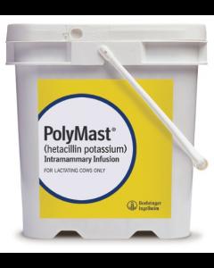 PolyMast - Rx 144 Count