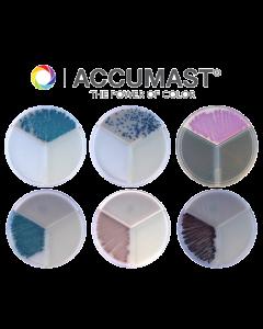AccuMast Plates (4 Count)