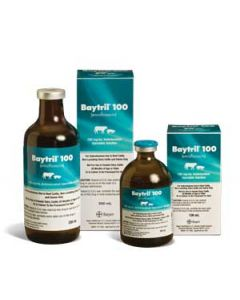 Baytril 100 - Rx 500 mL