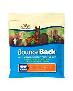 Bounce Back 4 oz.
