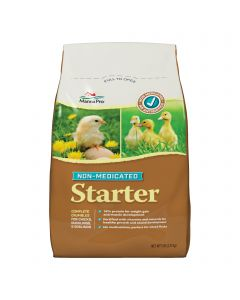Chick Starter Non-Medicated Crumbles 5 lb.