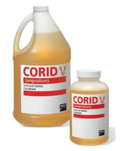 Corid Oral Solution [16 oz.]
