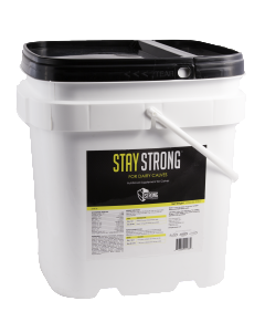 Stay Strong for Dairy Calves 8 lb.